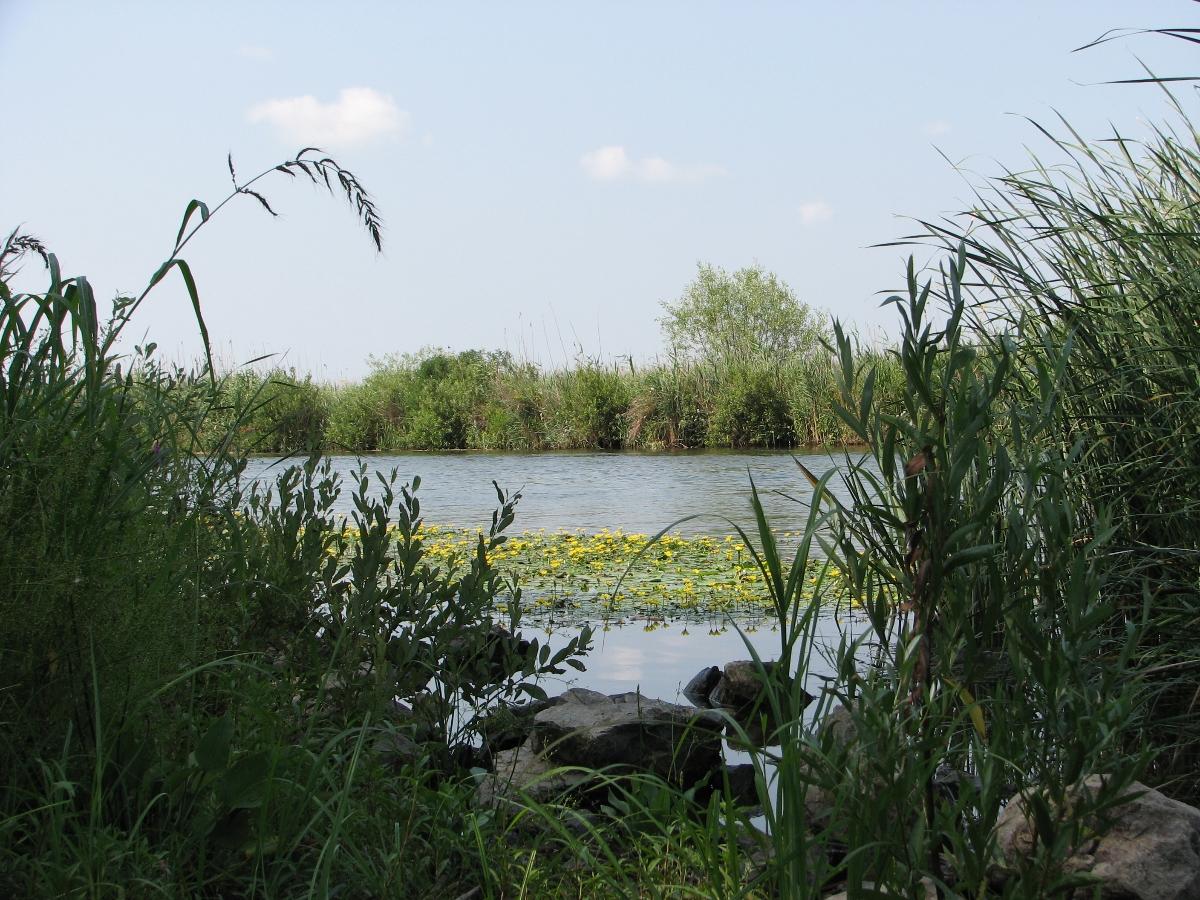 Danube Delta , Tulcea county
