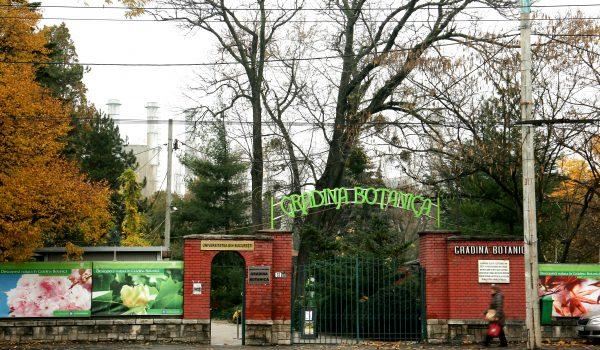 Botanical Garden - VLT personal driver Bucharest